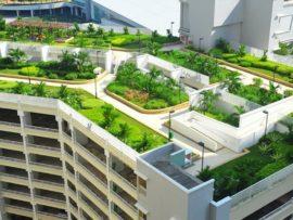 С июня вступил в силу ГОСТ зеленых крыш